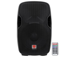 "12"" Professional PA Speaker w/ Bluetooth $20.00 ADDED TO ANY INFLATABLE RENTAL"