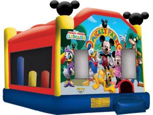 Mickey Park Combo C5