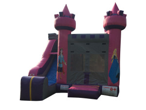 4-n-1 Princess Castle