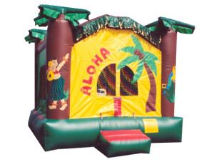 Aloha Bounce