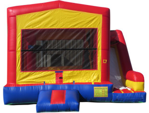 Frozen Bounce & Slide (image not permitted)