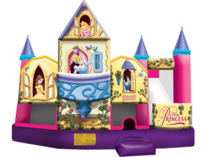 Disney Princess 3D Wet/Dry 5-n-1 Combo