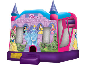 Disney Princess Combo Wet/Dry Slide