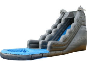 20' Dolphin Marble Slide