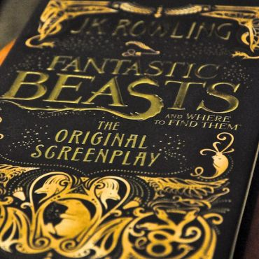 Univers Fantastic Beasts and where to find them
