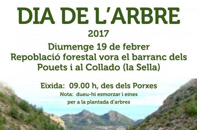 DIA DE L'ARBRE: REPOBLACIÓ FORESTAL