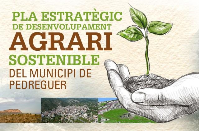 PRESENTACIÓ GENERAL DEL PLA DE DESENVOLUPAMENT AGRARI I PRIMERA DIAGNOSI DE L'ESTAT ACTUAL DE L'AGRICULTURA MUNICIPAL.