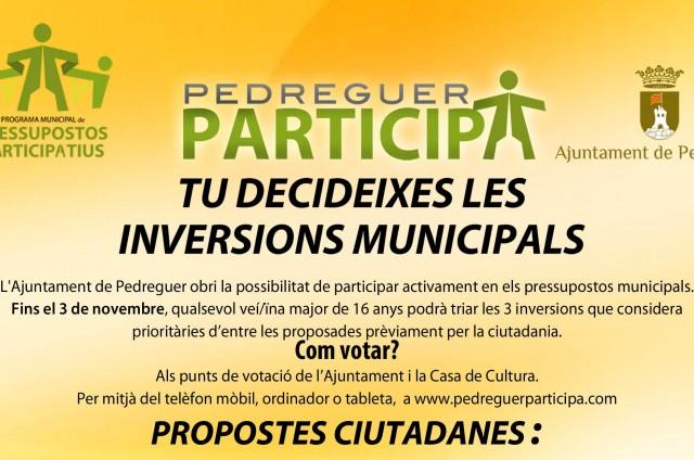FASE DE VOTACIÓ. PRESSUPOSTOS PARTICIPATIUS