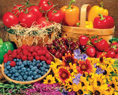 Garden Goodies 1000 Piece Jigsaw Puzzle