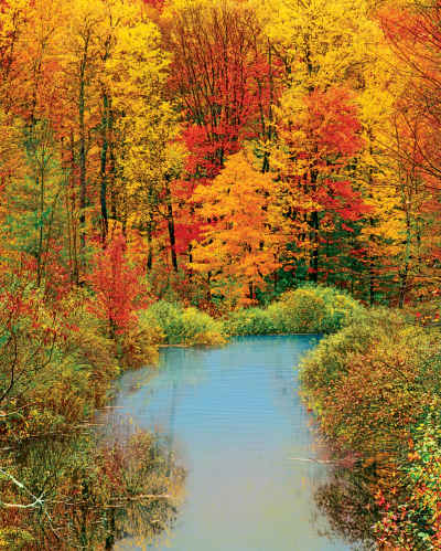 Autumn Reflection 1500 Piece Jigsaw Puzzle