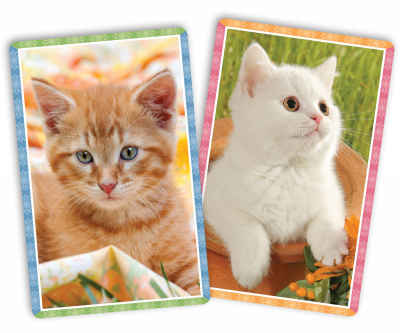 Kittens Standard Index Playing Cards
