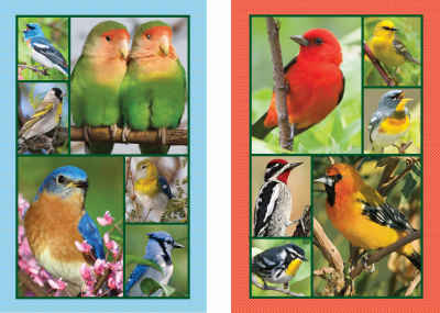 Songbirds Bridge Playing Cards Jumbo Print Index Playing Cards
