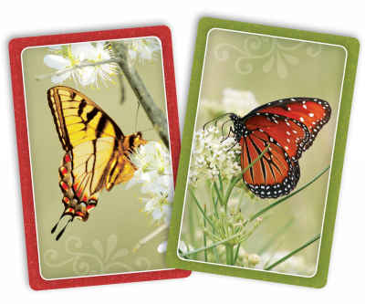 Butterflies Jumbo Print Index Playing Cards