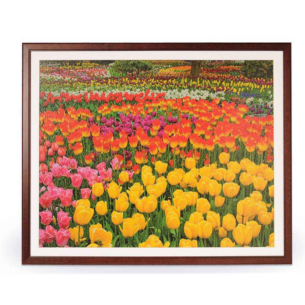 1500 Piece Jigsaw Puzzle Wooden Frame 28.75\