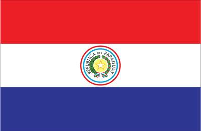 Paraguay World Flags - Nylon & Polyester - 2' x 3' to 5' x 8'
