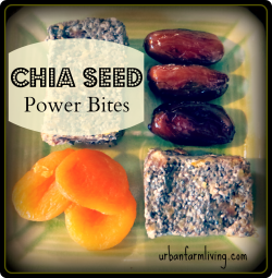 Chia Seed Power Bites