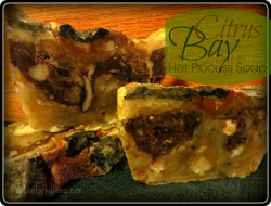Citrus Bay Hot Process Soap