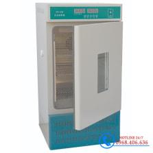 Hình ảnh Tủ ấm lạnh 150 lít Xingchen SPX-150B (Tủ ủ BOD) sản phẩm có sẵn tại Stech Sài Gòn