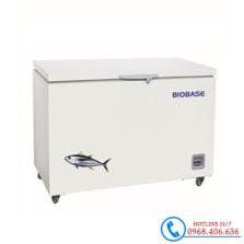 Hình ảnh Tủ bảo quản âm 60 độ C 118 lít Biobase BDF-60H118A sản phẩm có sẵn tại Stech Sài Gòn