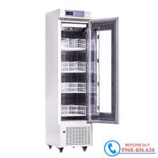 Hình ảnh Tủ lạnh trữ máu chuyên dụng 210 lít Biobase BBR-4V210 sản phẩm có sẵn tại Stech Sài Gòn