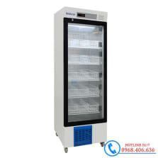 Hình ảnh Tủ lạnh trữ máu chuyên dụng 310 lít Biobase BBR-4V310 sản phẩm có sẵn tại Stech Sài Gòn