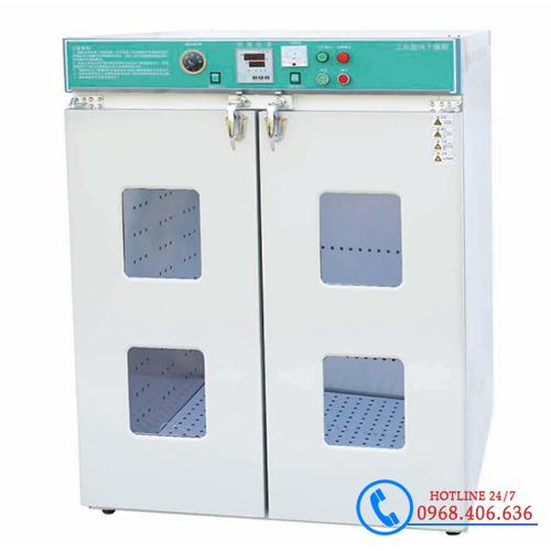Tủ sấy Trung Quốc hiện số DGF-4A-II 640 lít Xingchen 250 độ