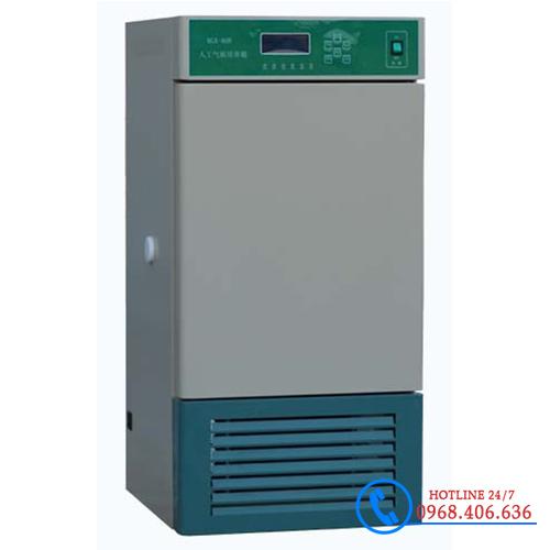 Hình ảnh Tủ vi khí hậu 250 lít Xingchen HSP-250B cung cấp bởi Stech Sài Gòn. Sản phẩm có sẵn tại Hà Nội và Hồ Chí Minh