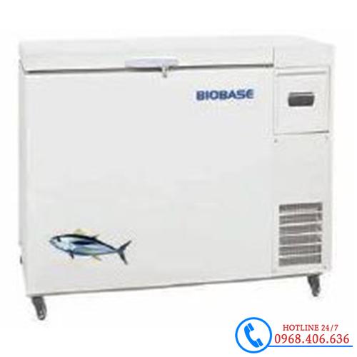 Hình ảnh Tủ bảo quản âm 60 độ C 458 lít Biobase BDF-60H458 sản phẩm có sẵn tại Stech Sài Gòn
