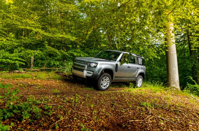 Land Rover Defender in woodland