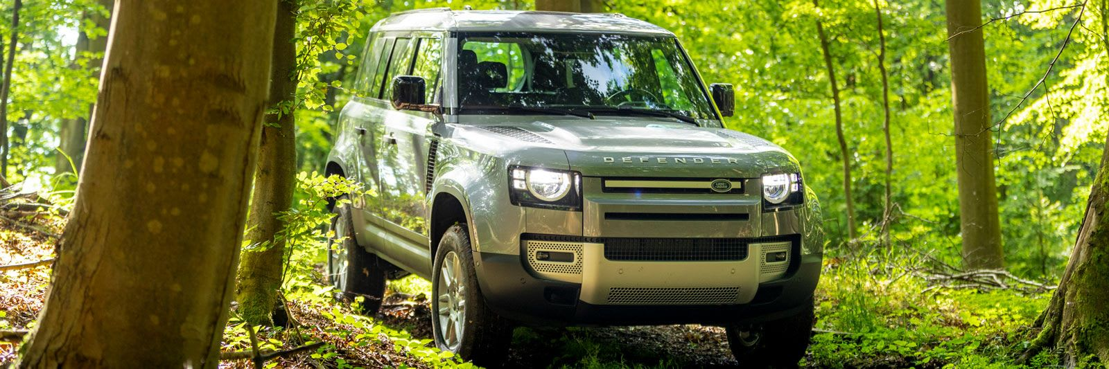 land rover rover defender in woodland