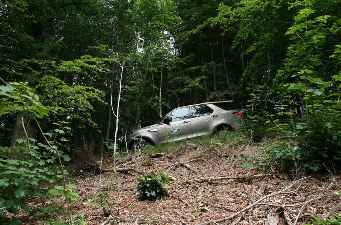 Land Rover Discovery in woodland=