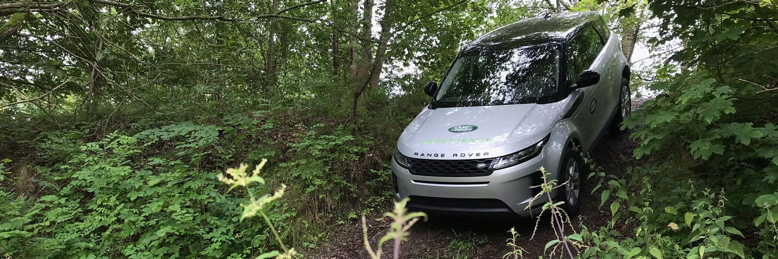 Range Rover driving in woodland