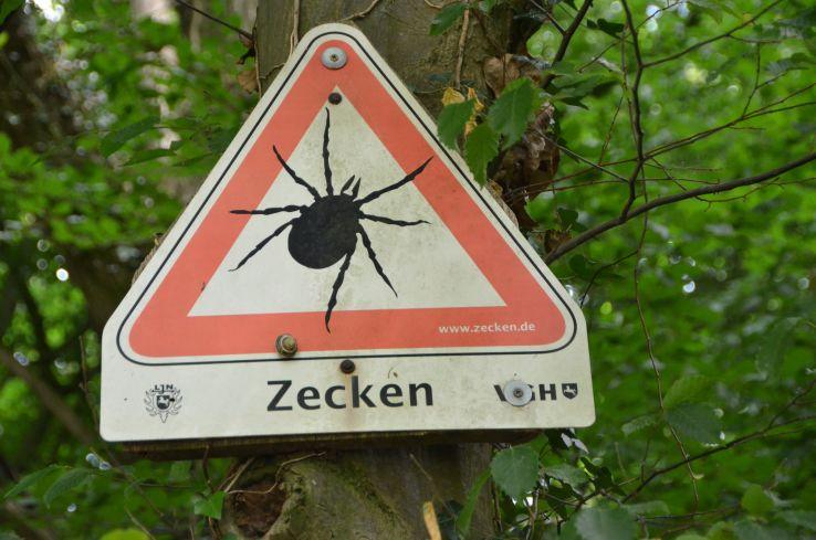 """""""Zecken"""", CC-Lizenz -by-; Foto: quapan auf flickr"""