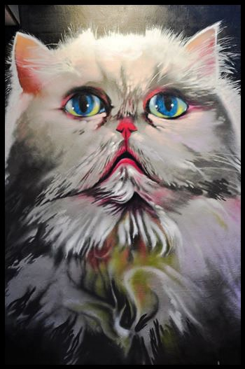Grumpy Cat by Elmar Lause