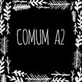 comum_a2