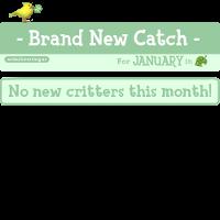 NewCatchJanuaryicon_hgtfji