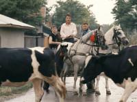 Dokumenty, artové snímky, sociální a rodinná dramata – deset nadějných režisérů z celé Evropy představí na 51. MFF Karlovy Vary své filmy