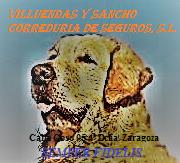 VILLUENDAS Y SANCHO CORREDURIA DE SEGUROS, S.L.