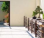 bonsai-garden