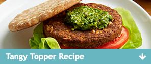 Tangy Topper Recipe