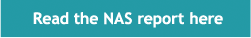NAS Report