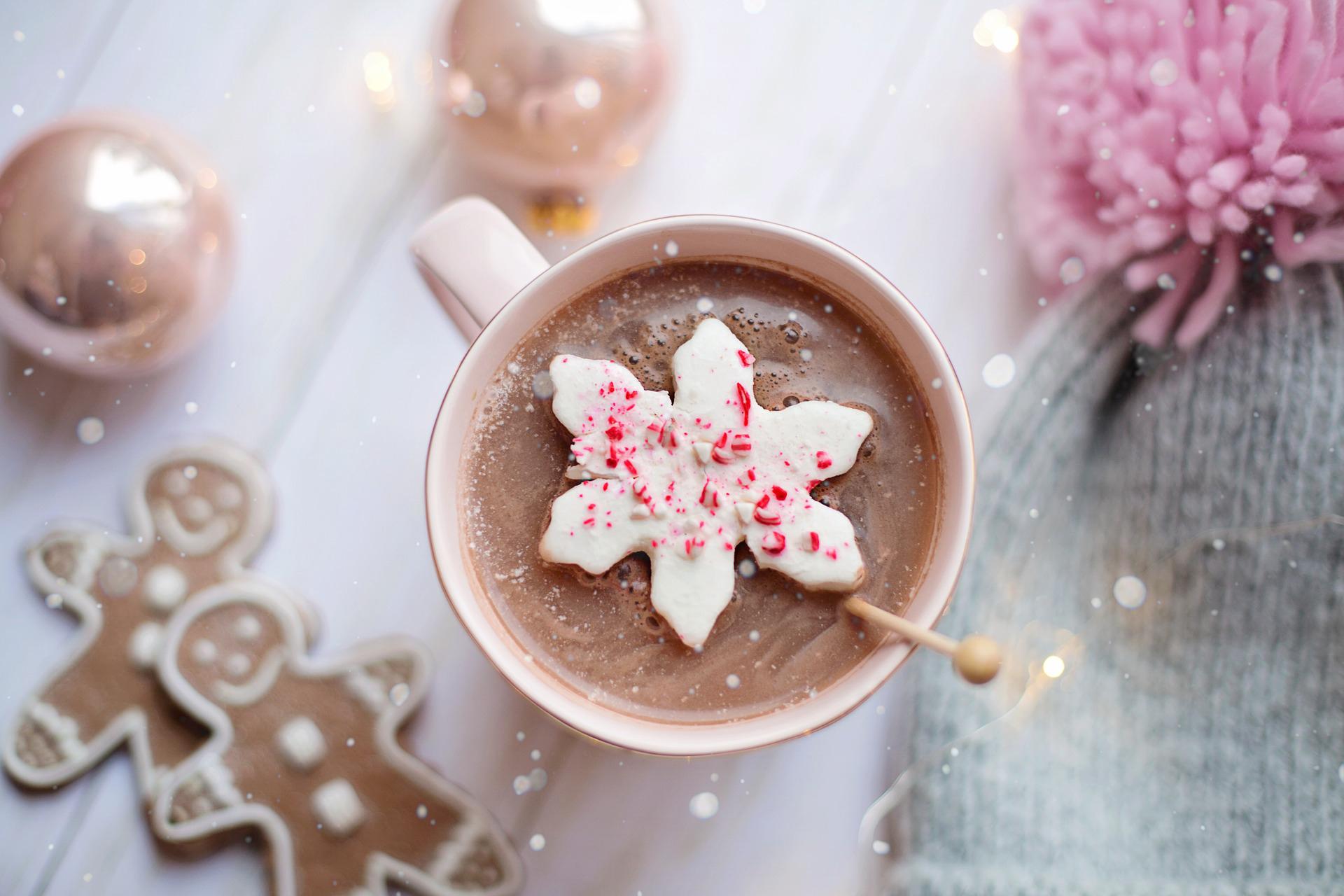 Eine Tasse heisse Schokolade und Lebkuchen