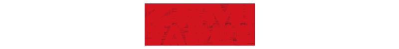 Zemi logotyp