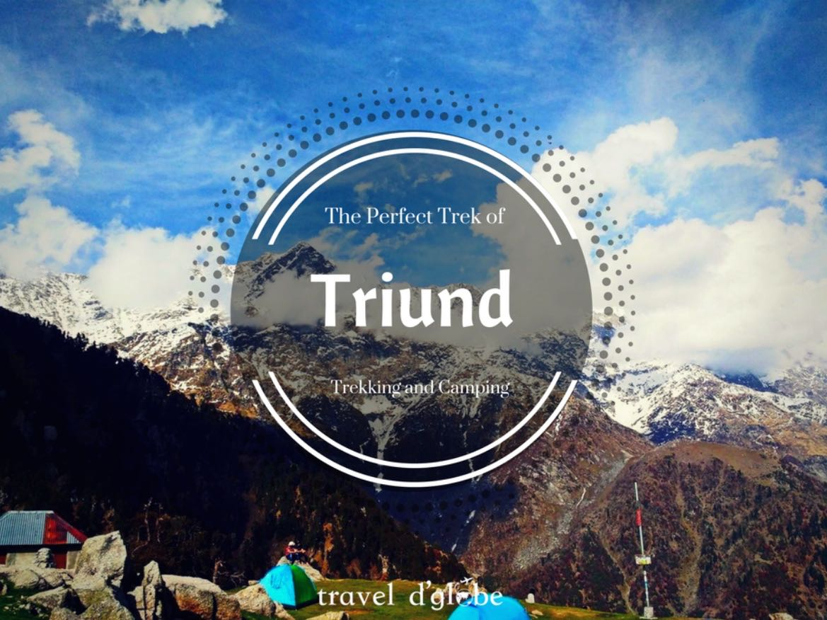 Triund Camping and Trekking in Mcleodganj