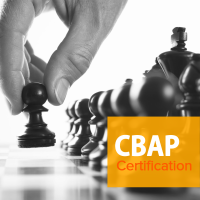 Business Analyst Training - CBAP Certification