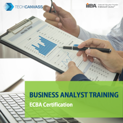 Business Analyst Training - ECBA Certification