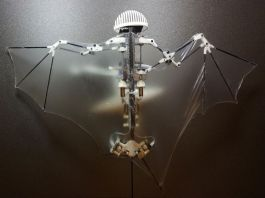 Bat Bot - Researchers Unveil An Autonomous Robot That Copy A Bat's Flight