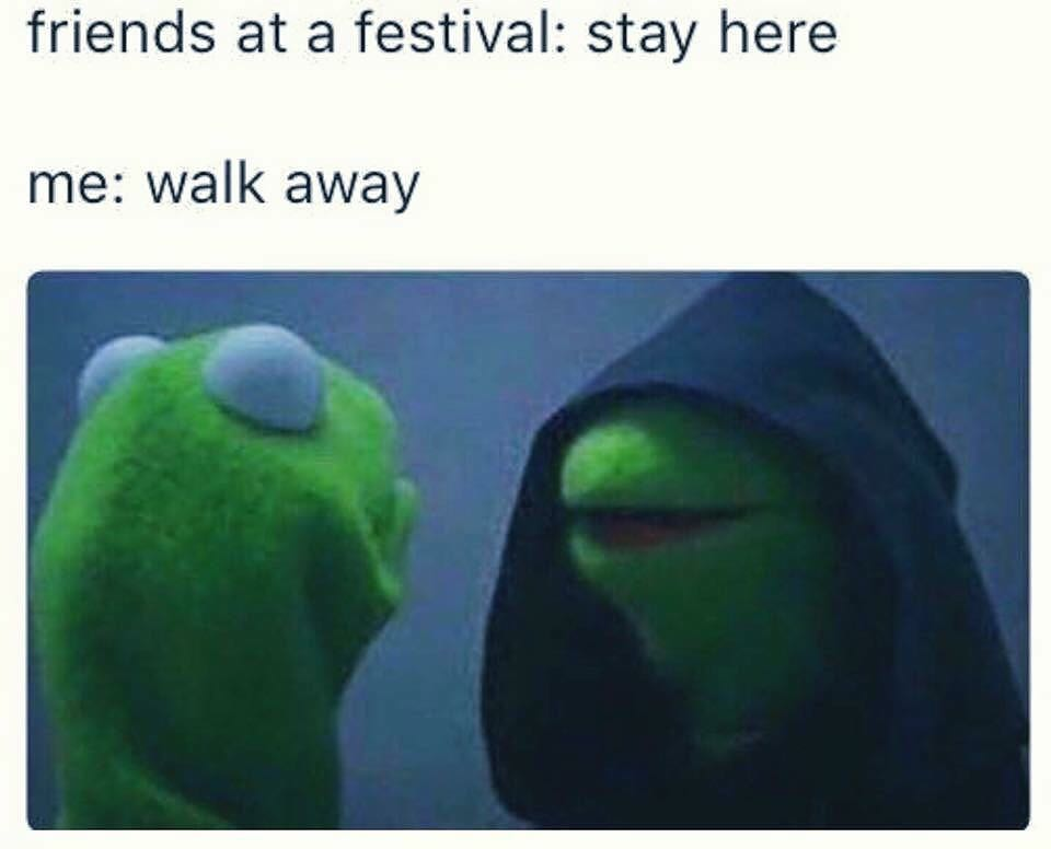 Funny_Festival_Memes_2016_11_dbhui3 10 memes that perfectly describe your festival experience techno,Festival Memes