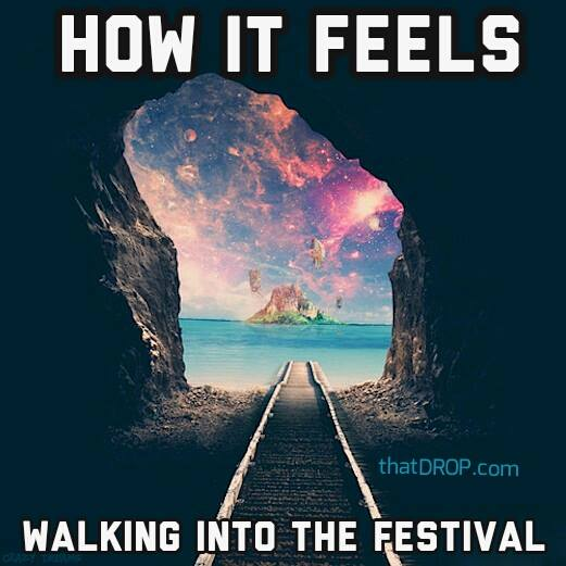 2_dfs5t3 10 memes that perfectly describe your festival experience techno,Festival Memes