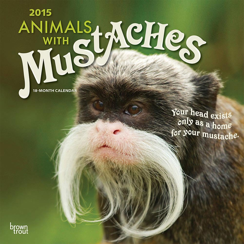 Animals with mustaches